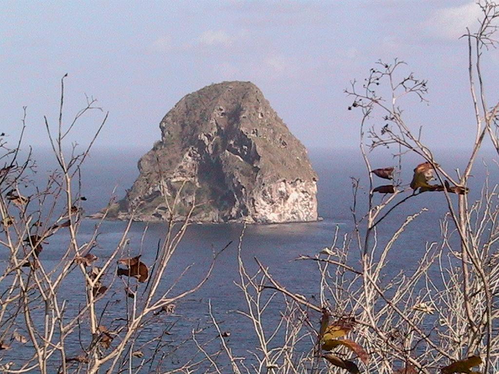 La Martinique en liberté